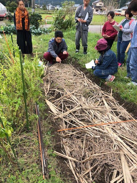 自然農法入門と大豆刈り取り