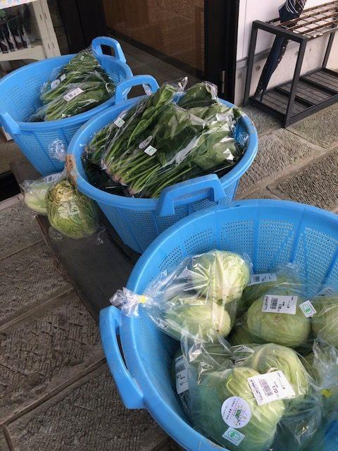 有機野菜が人気