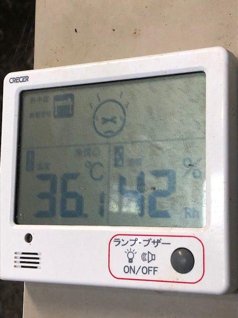 室温36.1度