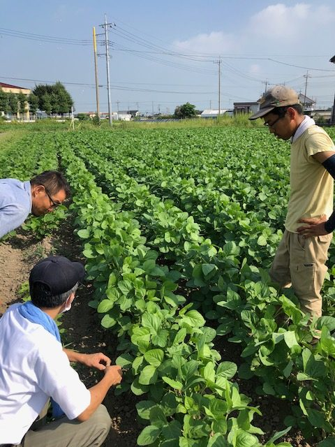 埼玉石井農園、瀬戸農場、㈱ごはんさん見学